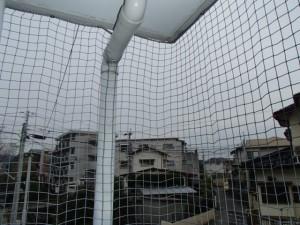ベランダ防鳥ネット設置3