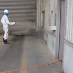 倉庫の害虫駆除4
